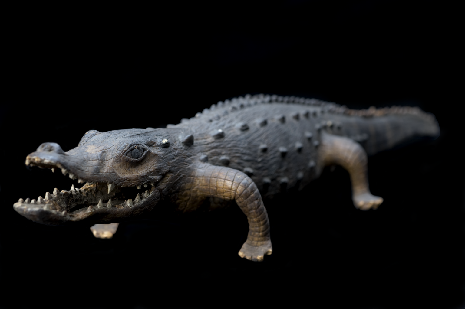 Model alligator, England, 1801-1900